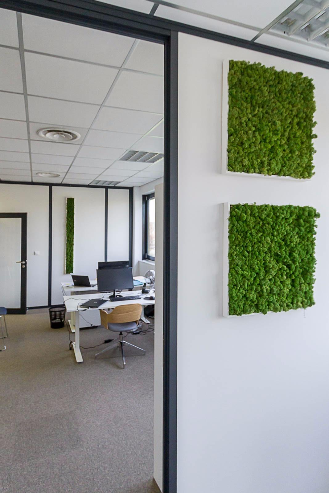 Decoration pour bureau professionnel Alsace - Studio Fan ...